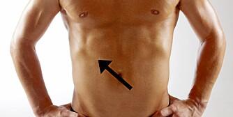 GALLESTEIN: Galleblæra ligger rett under leveren på høyre side av torsoen. De færreste merker noe til at de har problemer med gallestein, men om de setter seg fast kan du oppleve intense smerter.