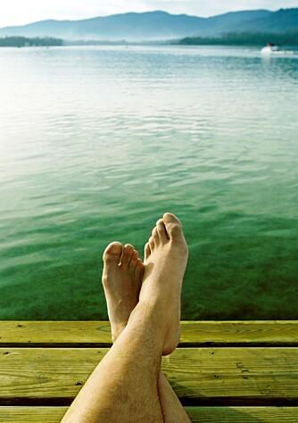I løpet av en manns gjennomsnittlige levetid vandrer føttene over 112 000 km, tilsvarende fire ganger rundt jorden.