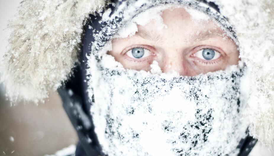 SYK AV KULDE: Man blir ikke syk av kulden i seg selv, men man er mer sårbar for infeksjoner når man fryser. Forkjølelse, influensa og andre virussykdommer er mer utbredt i vinterhalvåret fordi vi er mer innendørs, og har tettere omgang med hverandre.