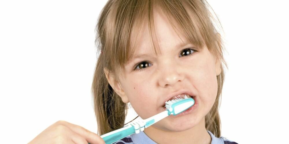 BAKTERIEBOMBE: Tannbørsten kan være en årsak til sykdommer.
