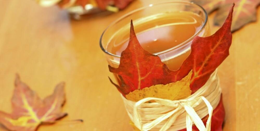 PERFEKT HØSTDRIKK: Lag en friskere variant av julegløggen med eplejuice og vodka. En god og  varm høstdrikk.