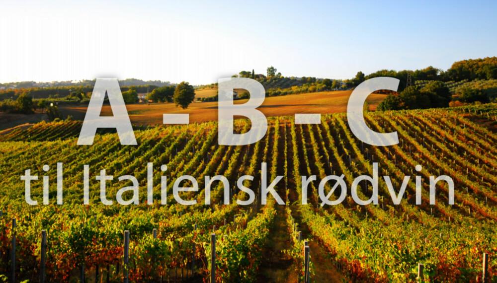 ITALIENSK VIN: Italia er full av god vin. Her får du en kjapp innføring i Amarone, Brunello og Chianti.
