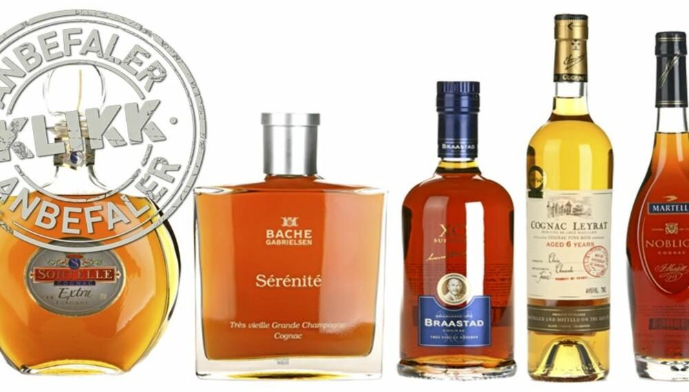 DE BESTE KJØPENE: Vi har testet 22 X.O. cognacer. Vi gir deg de beste kjøpene blant disse.