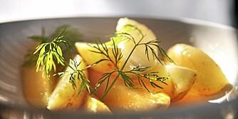 Her finner du seks nydelig oppskrifter på potetsalat.