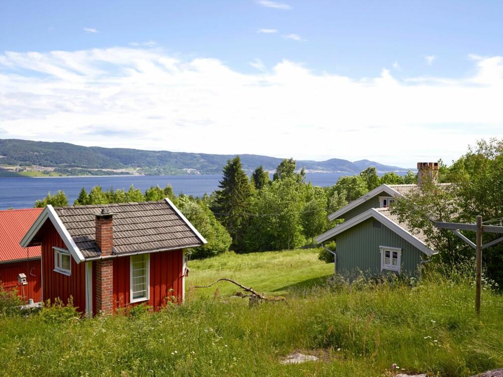 I DET GRØNNE:  Rømmerudbakken ligger vakkert til med panoramautsikt over Mjøsa.