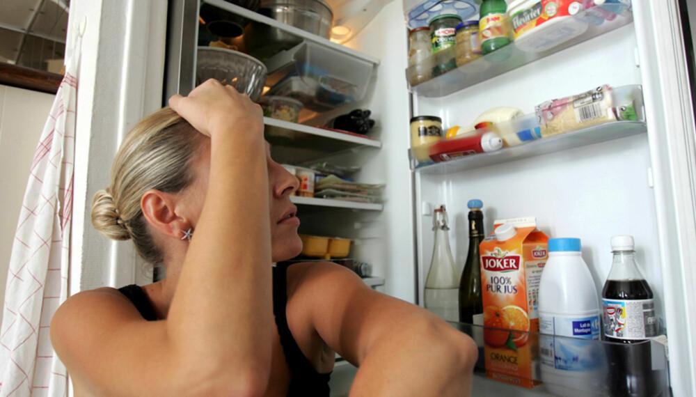 HER ER OVERSIKTEN: Dette trenger du i kjøleskapet.