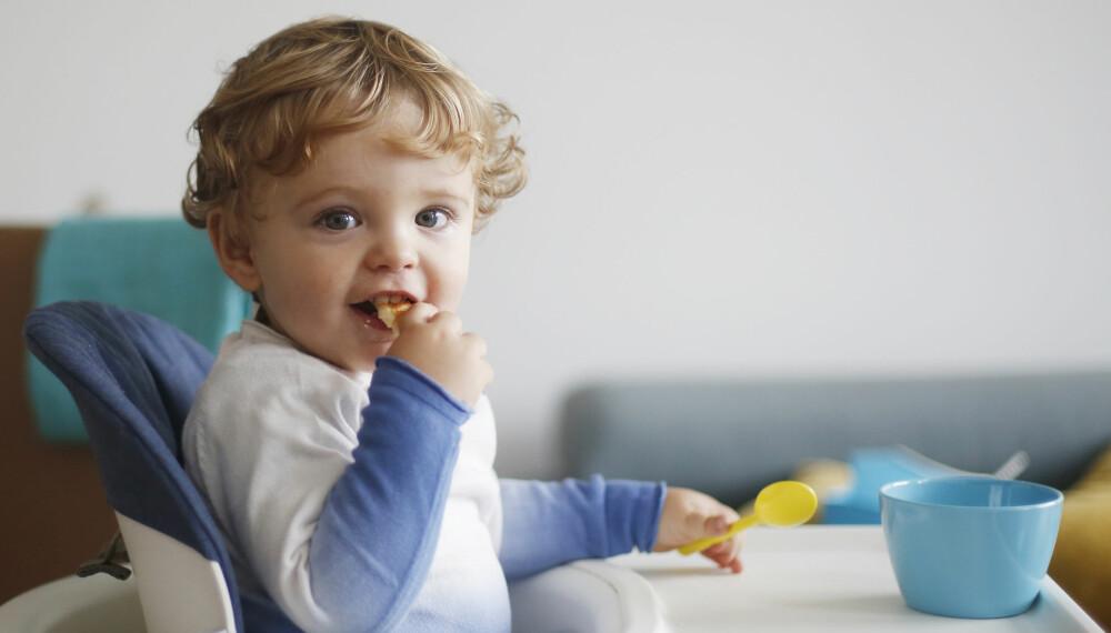 IKKE GI TIL BABYER: Kanel, honning og rosiner er blant matvarene som babyer ikke skal ha.