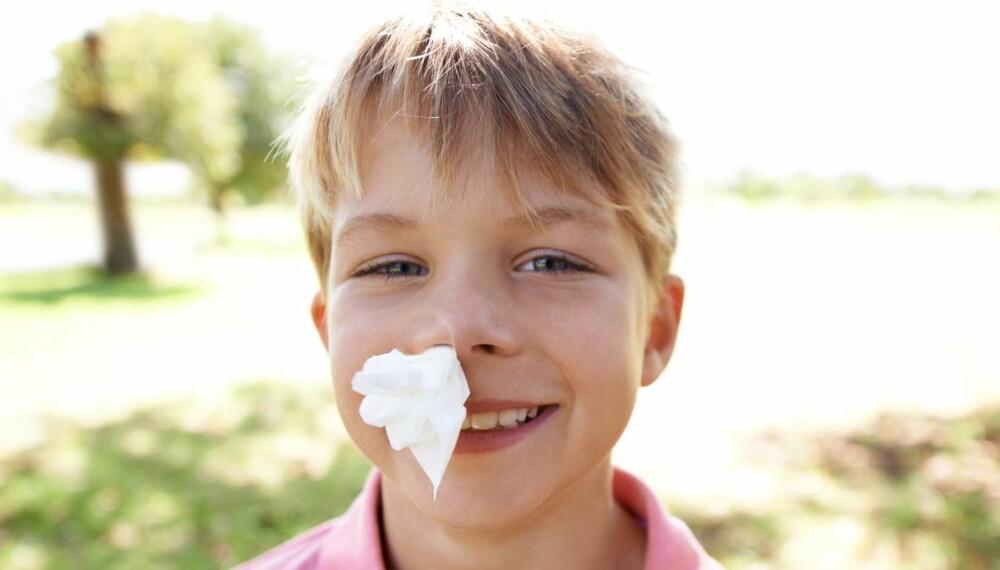NESEBLOD: Det er barn og eldre som blør oftest neseblod, og det er sjelden grunn til bekymring.