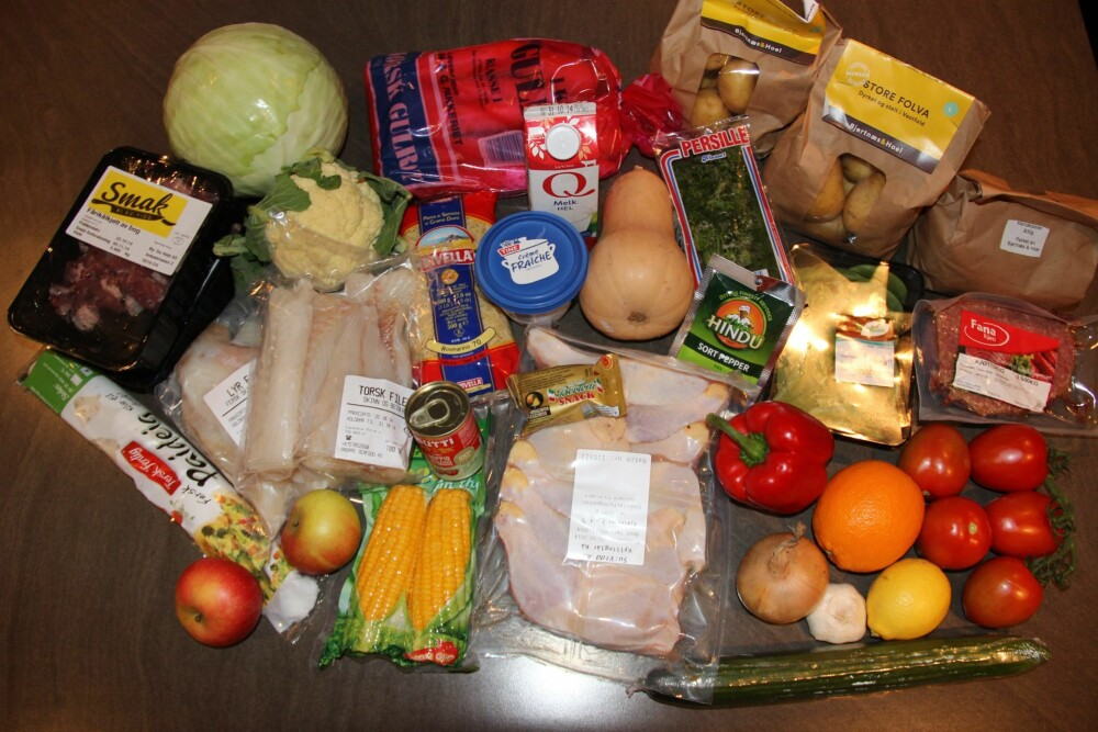 ADAMS MATKASSE: Veldig gode, ferske og fargerike grønnsaker og frukt. Fisk og kjøtt er vakuumpakket og i kjølepose. Trekk for at det ikke var noe i vanskelighetsgrad lett, bare middels og vanskelig.