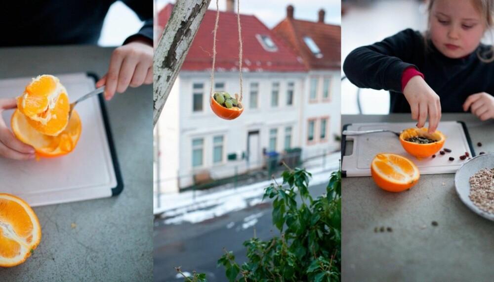 LAGE FUGLEMAT MED BARN: Det fine med å lage fuglemat i appelsinskall er at også beholderen er spiselig. La gjerne barna dele appelsinene om de er vant til å bruke kniv, men delfiafettet bør en voksen håndtere. Det blir veldig varmt!