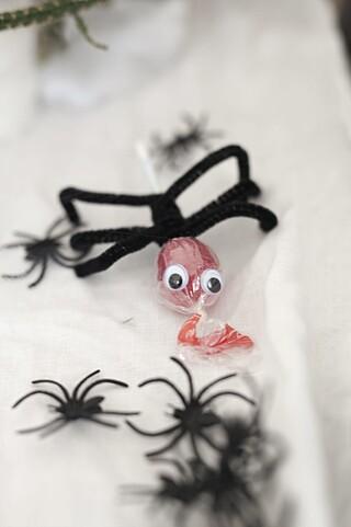 HALLOWEEN MED BARN: Ingen halloween uten ekte edderkopp-halloweenpynt!