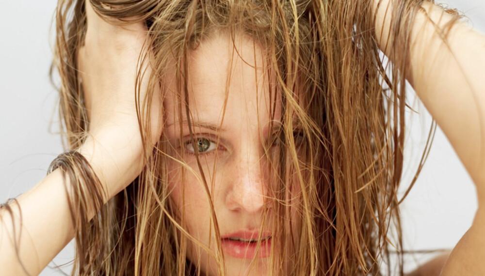 ALDRI MER BAD HAIR DAY: Her er tipsene som redder deg fra hårkrisene.