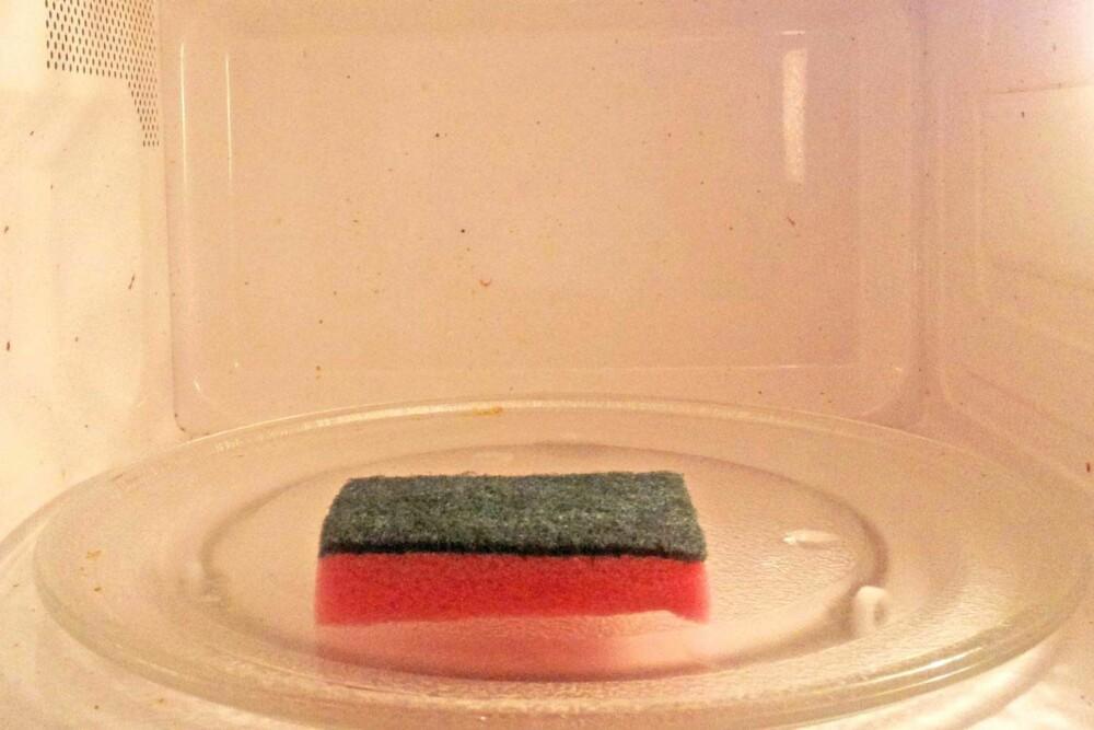 SVAMP I MIKROEN: Ett minutt på full styrke er det som skal til for å bli kvitt det meste av bakteriene.