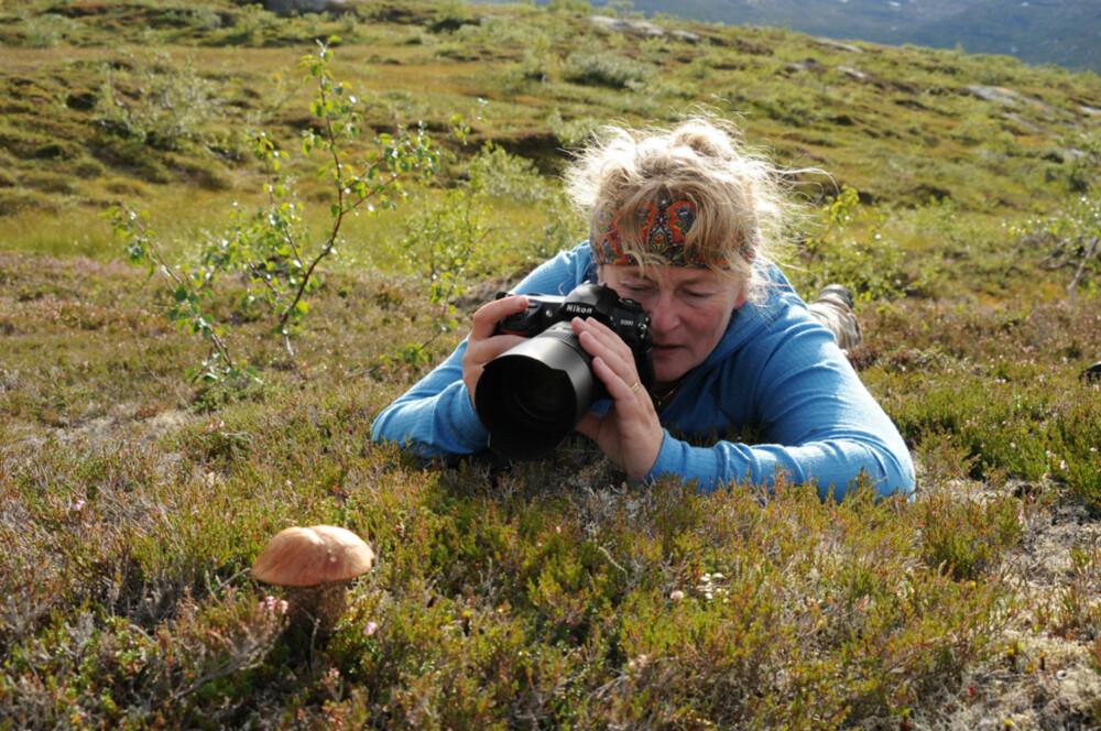 TETT PÅ: Naturfotograf Aina Bye legger seg gjerne helt flat når hun skal fotografere. Nye vinkler og merkelige posisjoner er ofte det som skal til for å skape spennende motiv.