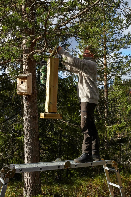 MAT: Bent fyller på frø i fuglemateren han selv har laget, etter oppskrift i Hytteliv.