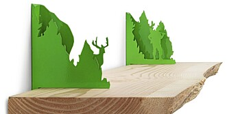 FØLTE SKOGENS RO: Mange bor i by, og da kan det være deilig med et lite hint av skog i hjemmet.