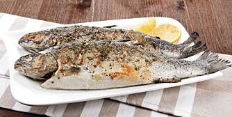 FET FISK: Omega-3 fra fet fisk senker innholdet av fettstoffet triglyserider i blodet. Høye nivåer av dette fettet henger gjerne sammen med insulinresistens, metabolsk syndrom og til slutt diabetes type 2.