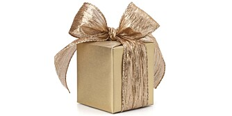 DYR GAVE: Om bryllupet holdes i utlandet, gaveønskene er kostbare og man i tillegg må betale i baren, er det ikke særlig populært...