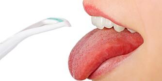 SKRAP TUNGEN: Enten du har en egen tungeskraper eller en tannkost med gummikuler bakpå kosten; bruk utstyret til å skrape bakterier av tungen. Dette kan være en av hovedårsakene til din dårlige ånde.