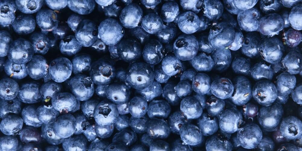 BLÅBÆR: Mat som er rik på antioksidanter kan booste fertiliteten.