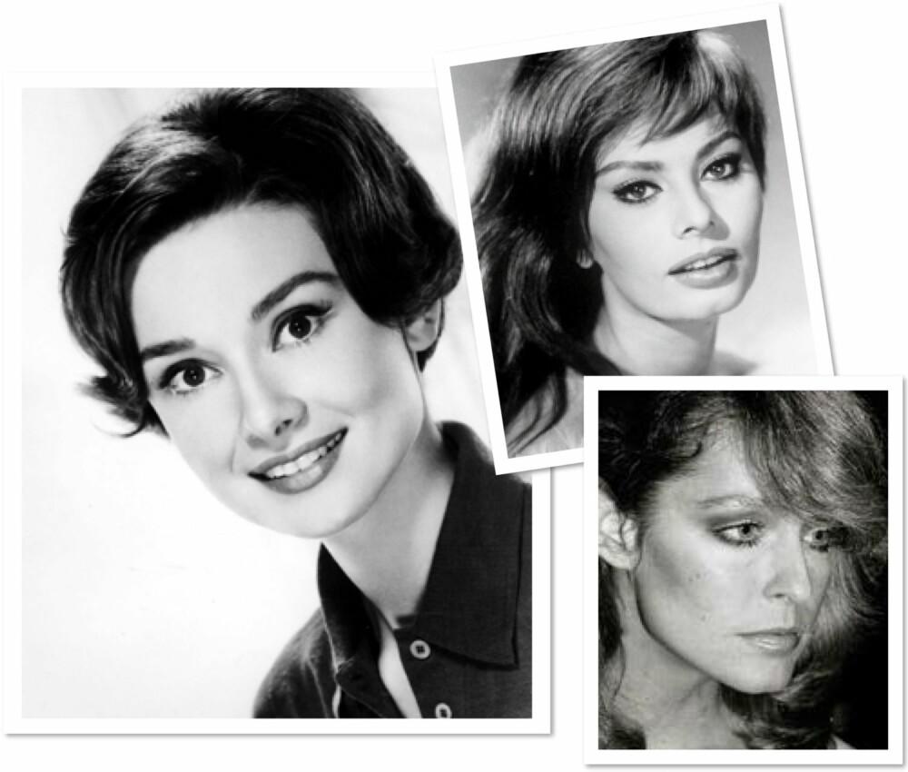 BRYN GJENNOM TIDENE: Til venstre: Audrey Hepburn (1950-årene). Øverst til høyre: Sophia Lauren (1960-årene). Nerdest til høyre: Farrah Fawcett (1970-årene).