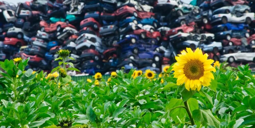 GJENBRUK: Gjenbruk er mer miljøvennlig enn gjenvinning. ILLUSTRASJONSFOTO: Colourbox
