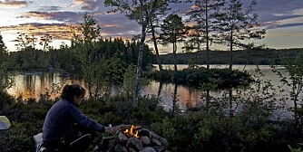 IDYLL: Glaskogen i Värmland.
