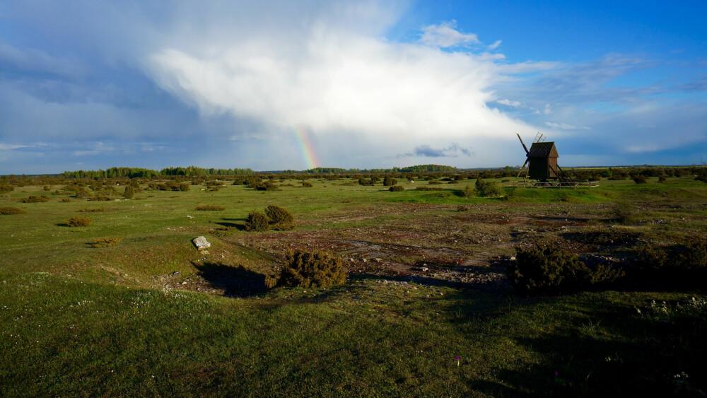 MYSTISK: Det tørre steppelignende alvaret finner du bare på Öland og Gotland.