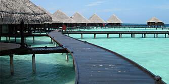 HAVENE STIGER: Maldivene, som bare såvidt strekker seg et par meter over havoverflaten, vil være ett av de første stedene som blir borte om verdenshavene fortsetter å stige.