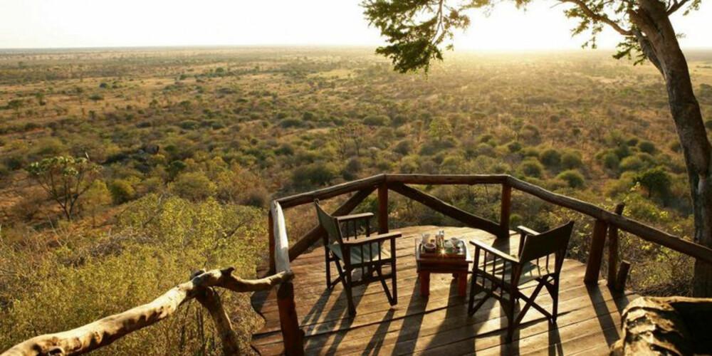 MIDT I VILLMARKEN: På dette hotellet i Kenya kan du sovne til lyden av ville dyr.