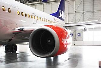 Det skal mye til før motoren på et fly blir ødelagt.