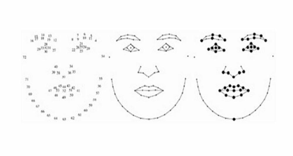 GEOMETRISERING: De tjekkiske forskerne benyttet en metode som kalles Goodalls permutation F-test, geometrisering av ansiktet. Visse punkter i ansiktet gis en bestemt tallverdi, slik figuren viser - ansiktets morphospace. Så undersøkte forskerne om det svært intelligente mennesket har vesentlig forskjellig plassering av såkalte semi-landmarks enn de som er mindre intelligent. Det viser det seg at forskerne ikke fant noen relasjon mellom ansiktets morphospace og IQ målt i IQ test.