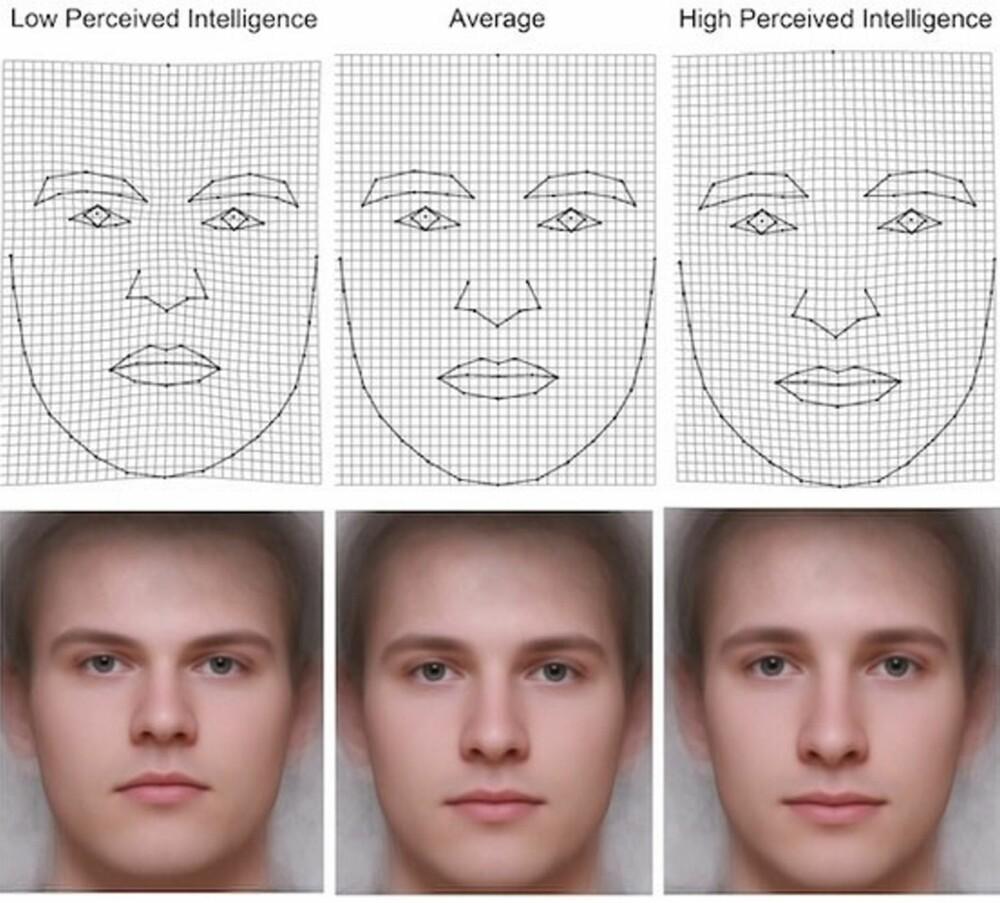 """MER ELLER MINDRE INTELLIGENT: Illustrasjonen viser fra venstre hvordan et """"""""mindre intelligent"""""""" ansikt, et """"""""gjennomsnittlig intelligent ansikt"""""""" og et """"""""intelligent ansikt"""""""" kan se ut i andres øyne."""