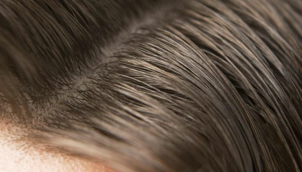HÅRVASK: Det er lite som er så hyppig diskutert som hvor mange ganger du skal og bør vaske håret ditt. Hvor ofte gjør du det?
