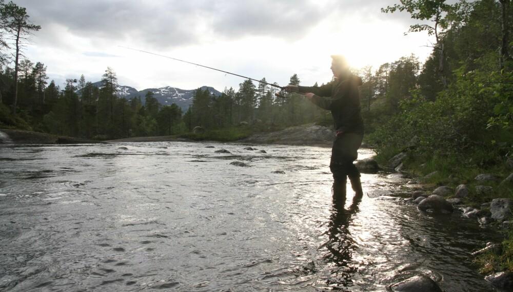 Fiske er balsam for sjela! (Foto: Aleksander L. Bergan)