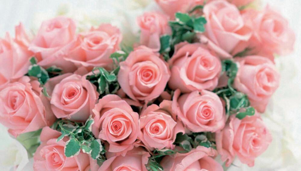 ROSE: Står for dyd og skjønnhet.