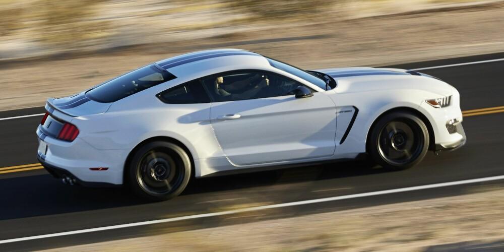 GT 350: Da er det bare å vente på den enda heftigere GT 500. FOTO: Ford