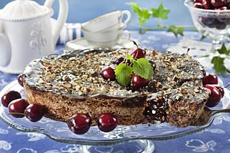 Nøttekake: Trenger du et glutenfritt alternativ, er denne saftige kaken helt super!