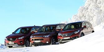 Imingsfjell 11122012 Folke SUV Test