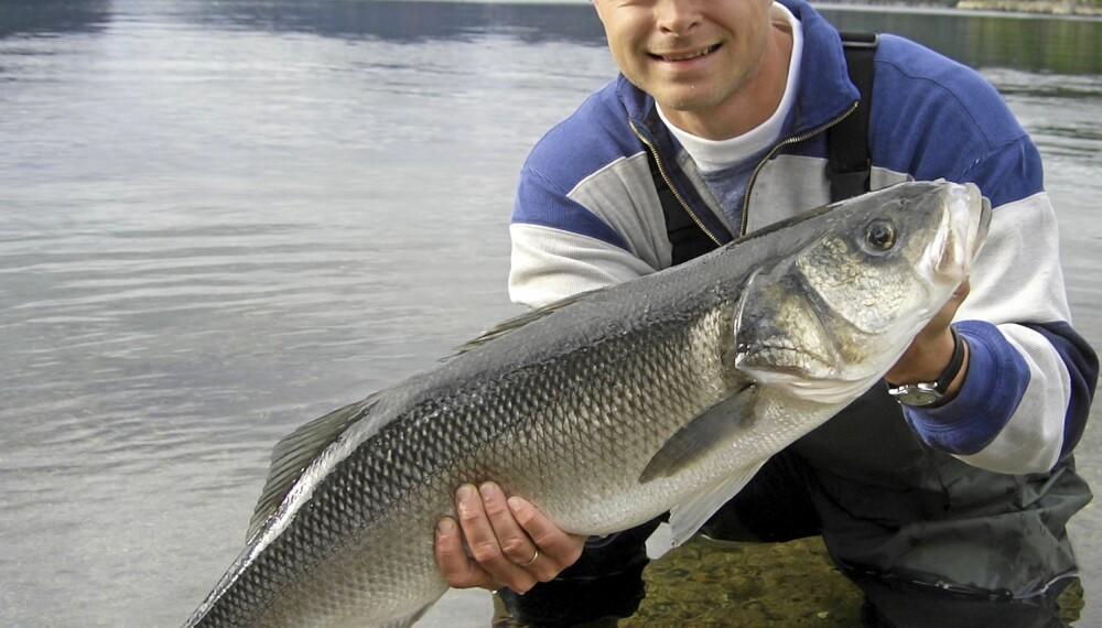 REKORDFISK: Øystein Davidsen fra Egersund med sin flotte havabborrekord på 6,09 kg. Fisken ble tatt på makrell i Flekkefjord i august 2005.