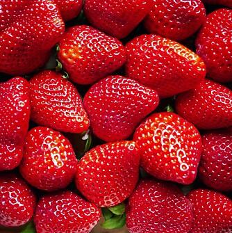 VELG GJERNE DE SMÅ: Jordbær inneholder fiber, antioksidanter og vitamin C. Vil du ha mest mulig smak, er de små et godt valg.