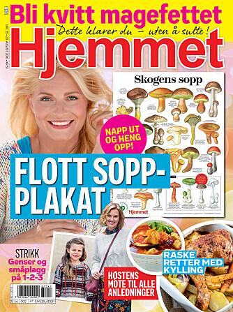 DEKORATIV: Hjemmet og Norges sopp- og nyttevekstforening har samarbeidet om den fine plakaten som følger med i Hjemmet uke 35.