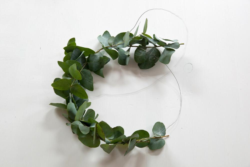 DIY: Du kan enkelt lage en fyldig og dekorativ krans av eucalyptus.