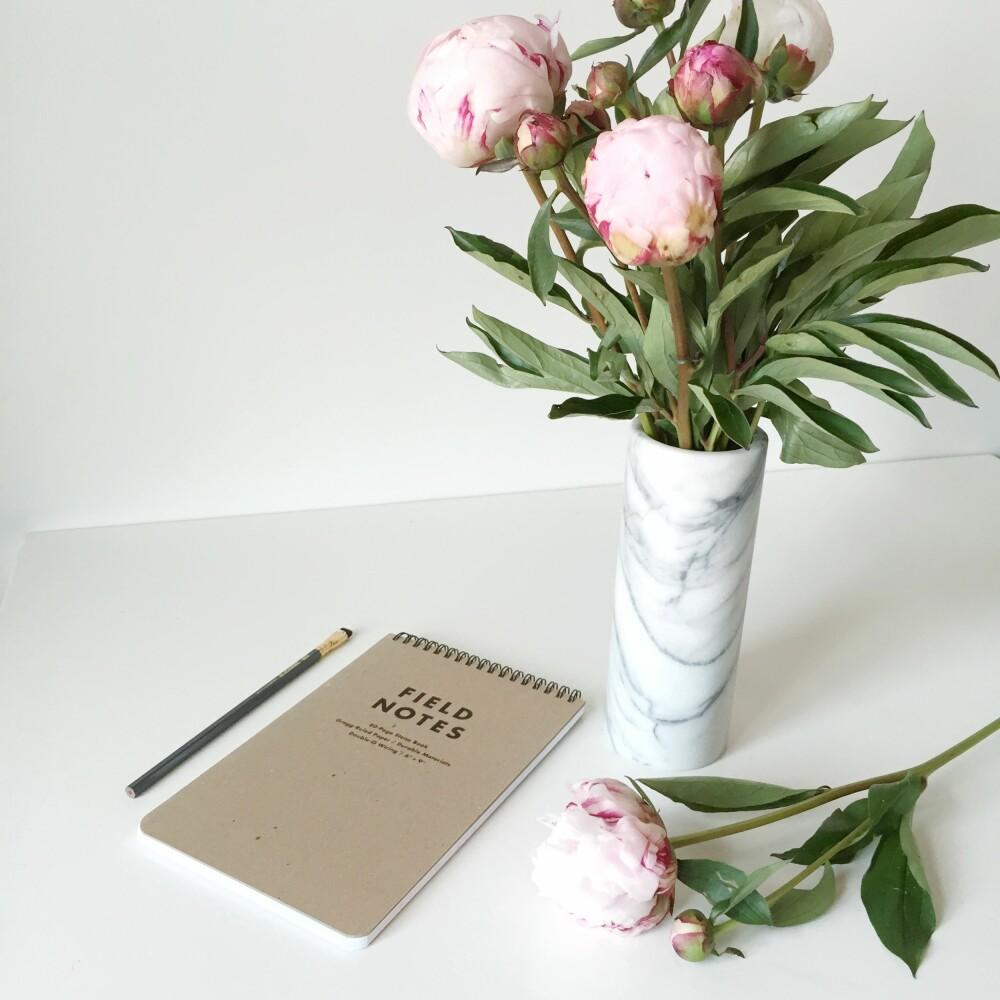 DEKORATIVT: Blomster og grønne planter tilfører interiøret det lille ekstra, og er dessuten en kjempefin vertinnnegave, synes Ann Merete.