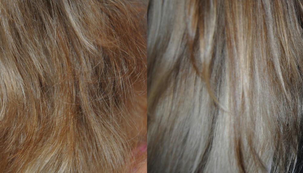 FØR OG ETTER: Til venstre viser bildet hvordan håret til Katarina Olsen så ut før blekingen, og til høyre vises resultatet av blekingen.