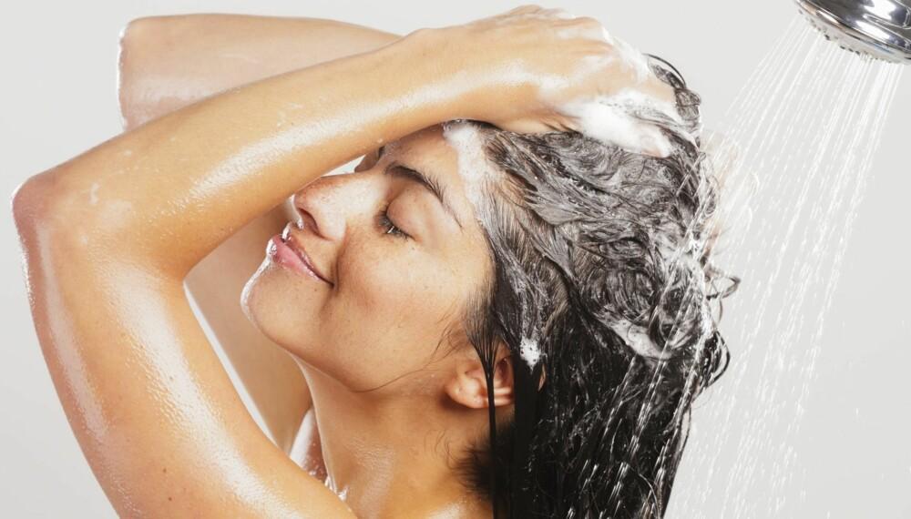 SJAMPONERING: Hvis du tror at sjampo skal rense håret, tar du helt feil.