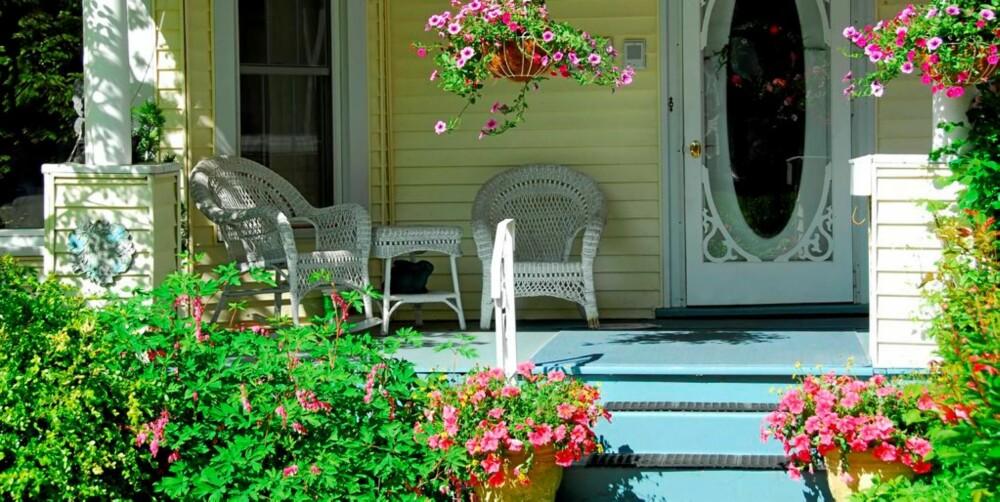 PLANT I KRUKKER OG KAR: Ampler, krukker og potter kan fylles med dine favorittblomster.
