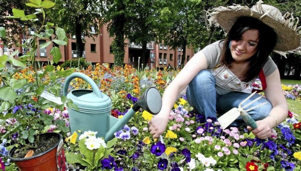 JUNIHAGEN: Vi forteller deg hvordan du steller i hagen i juni.