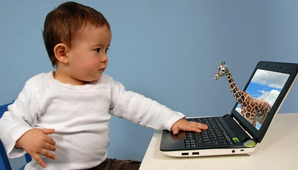 PÅ NETT. Organisasjonen Voksne for barn ser ingen grunn til at små barn ikke skal spille barnevennlige spill på nettet fra de er ganske små.