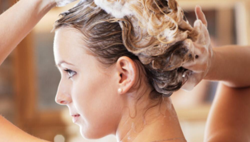 FÅ FINERE HÅR: Vasker du håret slik ekspertene sier du skal gjøre, vil du ende opp med både finere og sunnere hår.